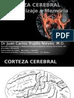 corteza-cerebral.pptx