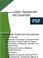 Membrane Transport Mechanisms