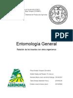 entomología-general.docx
