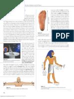 Unidad 1 Física y Medición (Perez Montiel_18-33)
