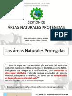 Gestión Ambiental SINANPE.pdf