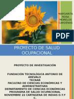 proyectosaludocupacionalfinal-101130154353-phpapp01.ppt