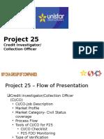 2013 CICO Module.pptx