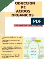 PRODUCCION de Acidos Organicos