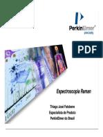 perkinelmerramanago2008-130304074542-phpapp02.pdf