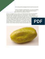 Frutos Que Crecen en El Pacifico Colombiano