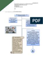 Organizador Grafico Actividad 1