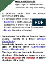 MDSC 1001 Anatomy - Skin.pdf