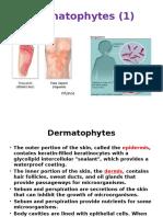 Myco- 05- Dermatophyte & Asperagillus