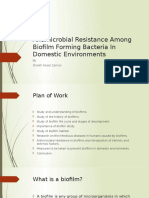 Antimicrobial Resistance Among Biofilm Forming Bacteria in Domestic Environments
