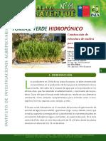 Informativo 51 Forraje Verde Hidropónico