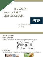 Int-Biologia-Molecular-Final.pdf