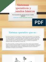 Sistemas Operativos y Comandos Básicos