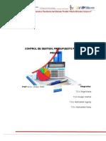 Control de Gestion y Presupuesto Público y Privado