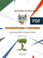 TRAUMATOLOGIA.pdf