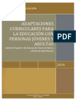 27_07_16_ADAPTACION CURRICULAR EPJA-PCEI.pdf