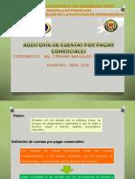 Auditoria a Cuentas Por Pagar Comerciales