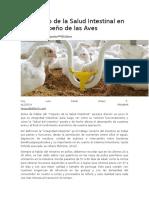 Impacto de la Salud Intestinal en el Desempeño de las Aves