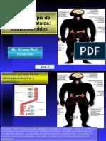 Farmacos_en_artritis_reumatoide_CORTICOSTEROIDES_16-I__238__0