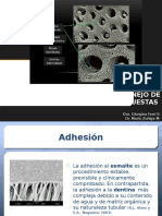 Clase 9_Polimerizacion.pptx