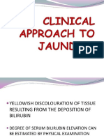 Clin Approach to Jaundice