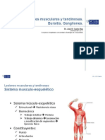 5. Lesiones Musculares y Tendinosas