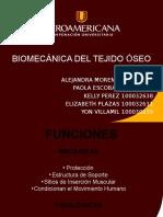 Diapositivas Modelo Biomecanica Del Hueso