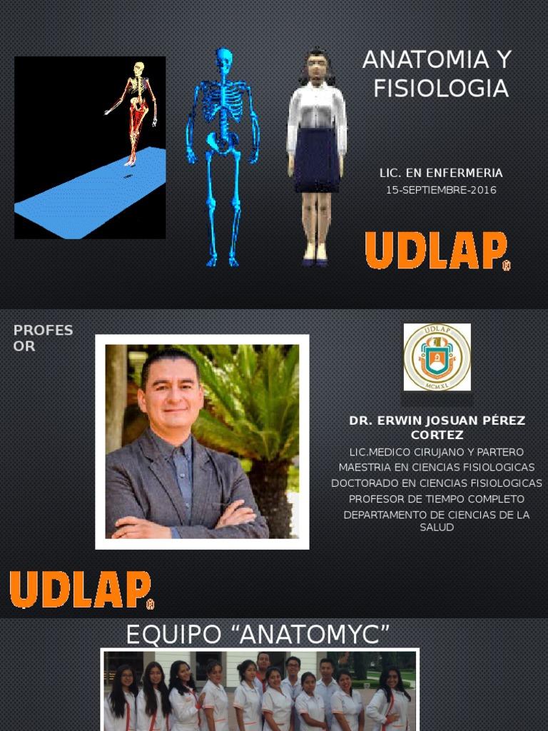 Bonito Maestría En Anatomía Y Fisiología En Línea Galería - Anatomía ...