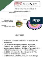 herpesvirus.pptx