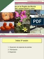 Expansion Plantas Polinizacion Dispersion