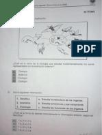 ciencias zapand ii-2013.pdf