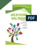 Guia Integral Primaria (1)