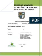 Informe-N° 03 de bioquimica_docx