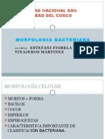 mrofologia bacteriana.pptx