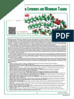 Avanti Brochure PEG Lipids