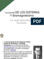 0 Teoria de Los Sistemas Brasil 2015 - Cópia