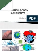 Ambiental clase I  II (1).pptx