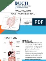 ValoracionrenalgastrointestinalRUTHMALDONADO1