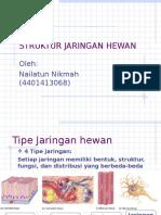 1.J. Epitel