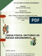 CARGA FÍSICA FACTORES DE RIESGO.pptx