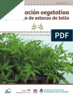 Inta- Propagacion Vegetativa Por Medio de Estacas de Tallo