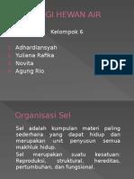 Fisiologi Hewan Air