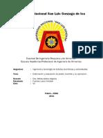 Jarabe Invertido Informe