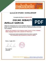 Borsa Di Studio 30%