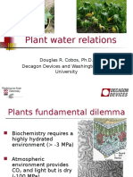 2009 Plant Water Relations