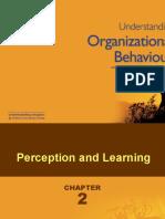 Perception &Amp; Learning