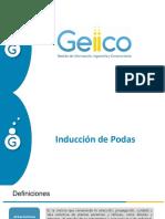Inducción_Podas_Geiico