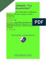 Actividad integradora Ciencias.docx