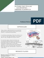 Aula - Estrutura das células eucariontes.pptx
