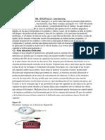 FLEXIONES DEL CIGUEÑAL.pdf